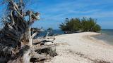 Tropical Island Florida - Photo from Piqsels id-ztkiu
