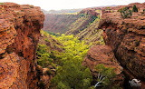 Julie Fletcher Kings Canyon Central Australia