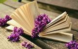 Lilac flowers good book wallpaper