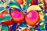 Apples-469