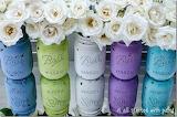 Jars as Vases
