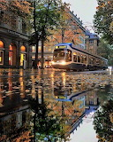 Tram, autumn