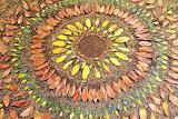 Mandala di foglie di James Brunt