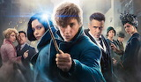 Fantastic Beasts and Where to Find Them 9