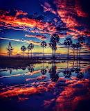 Reflections in Coachella