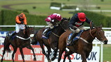 Bobs Worth and Barry Geraghty 2013 Gold Cup
