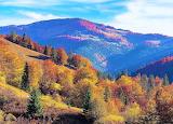 Countryside in Romania