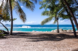 Beautiful Tropical Ocean Scene & Sea Boat Framed By Palm Trees