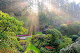 GardenNewlight