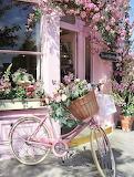 Cafe Sweet Shop Cafe Pink Rose Bike
