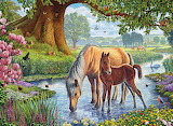 the-fell-ponies
