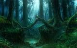 ~fantasy forest~