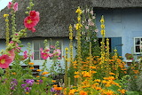 Cottage with flower garden