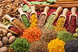 150 Espècies - Spices