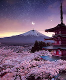 Japan vibes