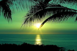 Lever de soleil-mer-palmiers