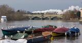 The Thames at Richmond