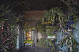 Abandoned House In Detroit Brought Back To Life With 4,000 Flowe