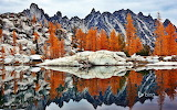 Golden larches and Prusik Peak reflected in Troll Sink Tarn. Upp