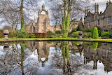 Kings pond