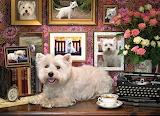 dog resting on desk