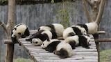Малыши устали