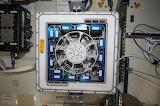 Kubik on Space Station, NASA