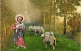 Young-good-shepherd-jesus-sheep-christ-nature-religion