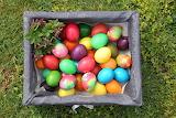 Easter 216