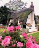 Cambridgeshire, England