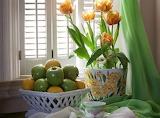 Tulips teacup apples window flowers window curtains still life