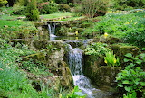 JP09 - Abbotswood Double Waterfall