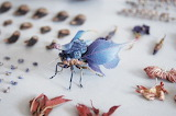 """Art Science tumblr myfrogcroaked """"insects of resin and brass"""" """"H"""