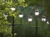 Iluminando el parque