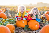 Ohio-pumpkin-patches