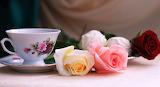 #Tea & Roses