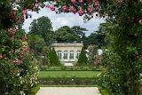 Trees, flowers, park, France, Paris, roses, bushes, Palace, Cast