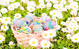 #Wrapped Easter Eggs and Dasies