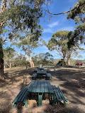 Bushy Picnic spot Domain Hobart Tasmania