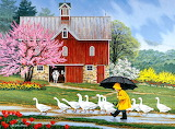 Puddle Jumpers~ JohnSloane