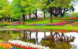 Beautiful Art Scenery