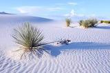Désert de sable blanc