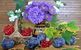 Flowers and plums still life