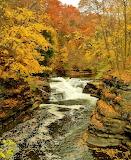 #Gorge Ithaca New York
