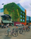 Camden living wall