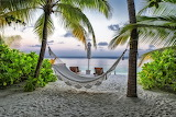 Beach, summer, palm trees, stay, hammock, The Maldives, resort