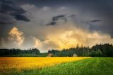 Farm, farmland, trees, evening, sky, clouds, colorful, landscape
