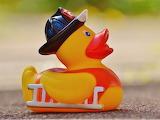 ^ Rubber duck fireman