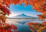 Autumn splendor at Mount Fuji