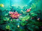 3-dimensional water lillies by Jeeyoung Lee